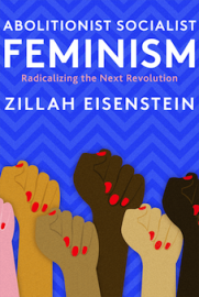 Abolitionist Socialist Feminism: Radicalizing the Next Revolution