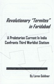 Revolutionary Termites in Faridabad