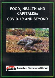 Food, Health and Capitalism: Covid-19 and Beyond