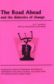 The Road Ahead and the Dialectics of Change